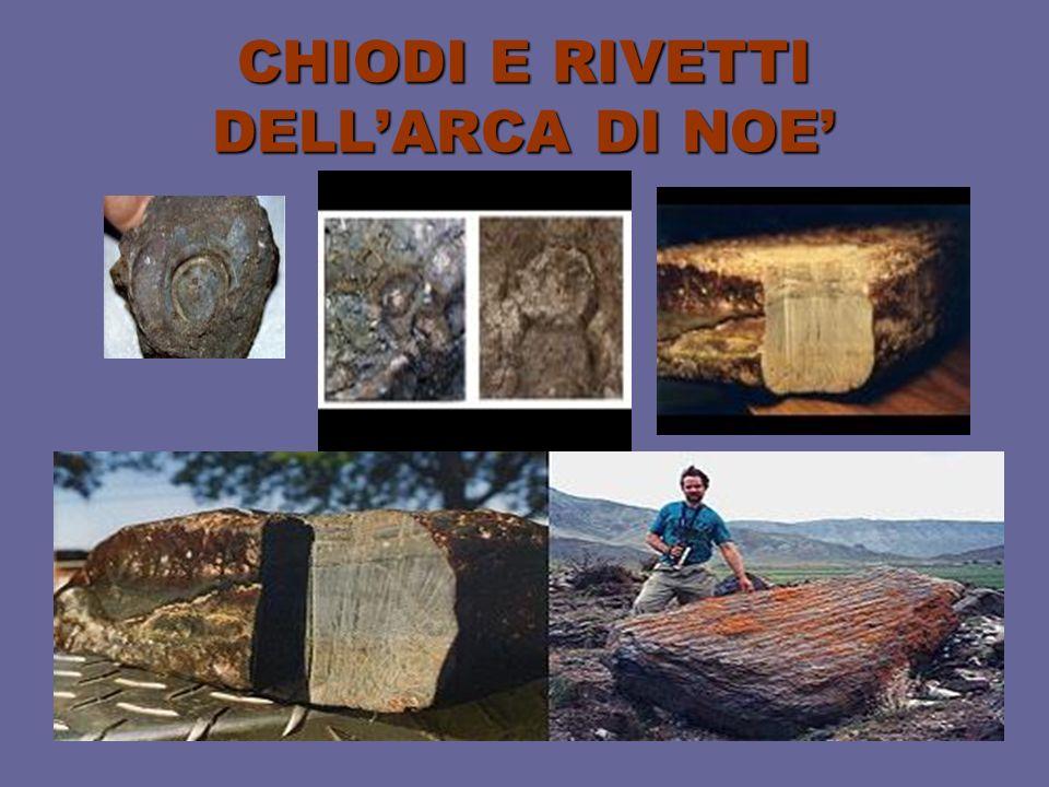 CHIODI E RIVETTI DELLARCA DI NOE
