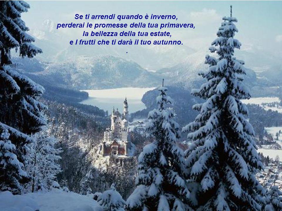 Se ti arrendi quando è inverno, perderai le promesse della tua primavera, la bellezza della tua estate, e I frutti che ti darà il tuo autunno..