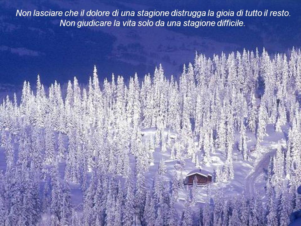 Non lasciare che il dolore di una stagione distrugga la gioia di tutto il resto. Non giudicare la vita solo da una stagione difficile.