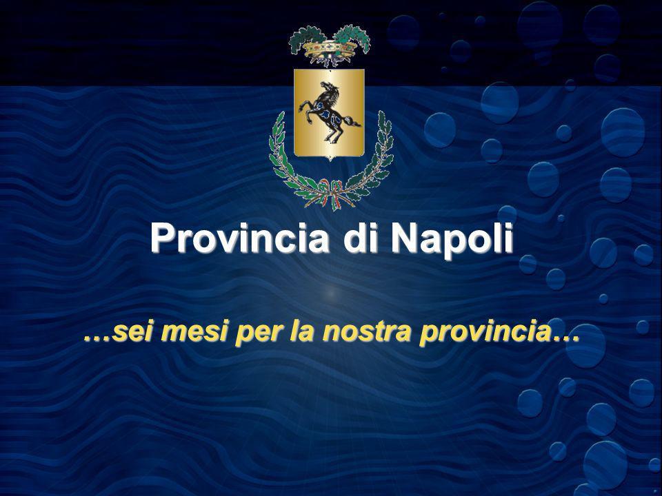Provincia di Napoli …sei mesi per la nostra provincia…