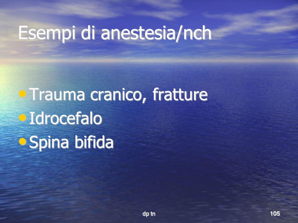 dp tn105 Esempi di anestesia/nch Trauma cranico, fratture Trauma cranico, fratture Idrocefalo Idrocefalo Spina bifida Spina bifida