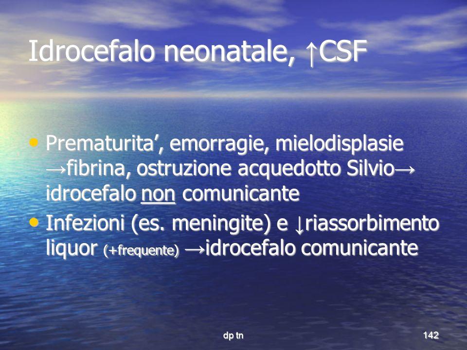 dp tn142 Idrocefalo neonatale, CSF Prematurita, emorragie, mielodisplasie fibrina, ostruzione acquedotto Silvio idrocefalo non comunicante Prematurita