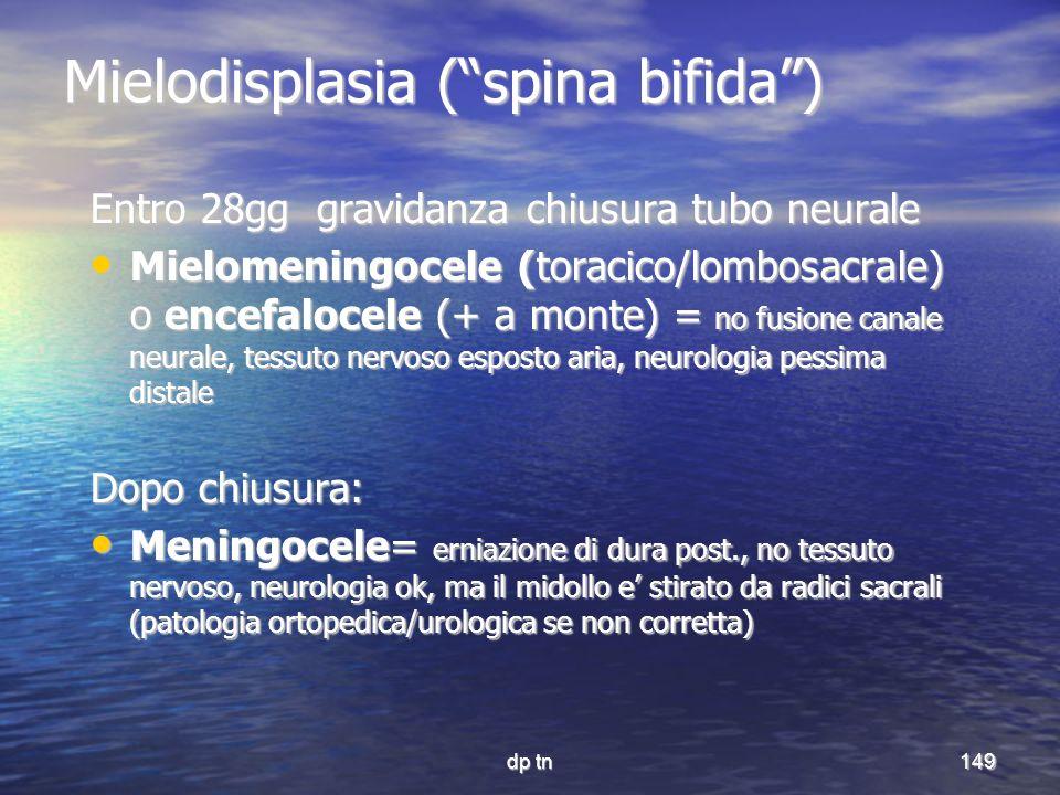 dp tn149 Mielodisplasia (spina bifida) Entro 28gg gravidanza chiusura tubo neurale Mielomeningocele (toracico/lombosacrale) o encefalocele (+ a monte)