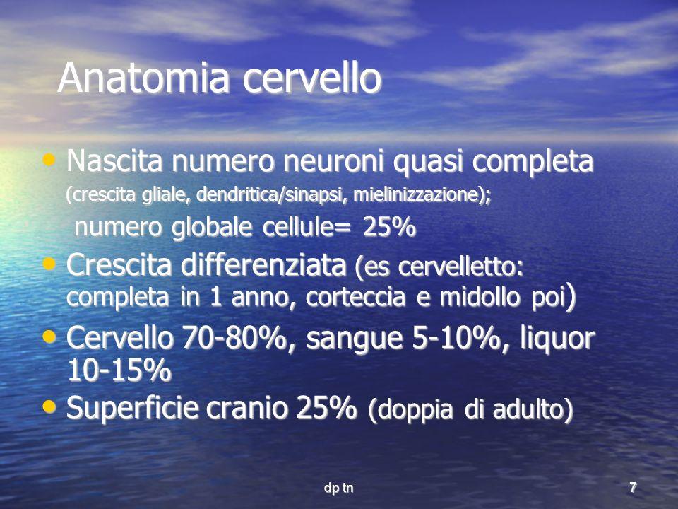 dp tn7 Anatomia cervello Nascita numero neuroni quasi completa (crescita gliale, dendritica/sinapsi, mielinizzazione); Nascita numero neuroni quasi co
