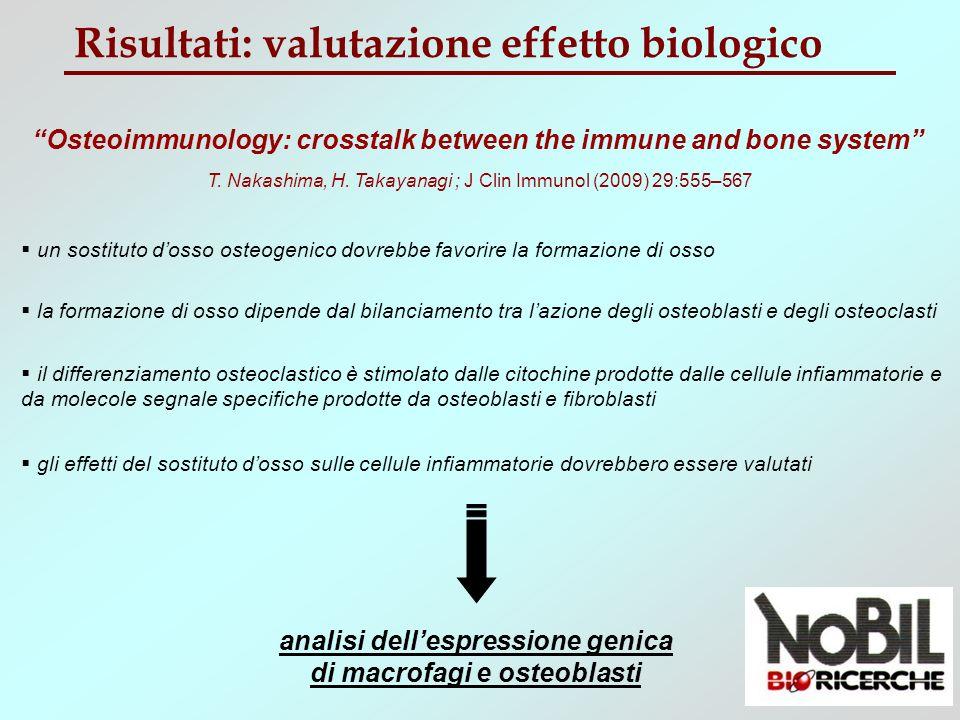 Risultati: effetto biologico (macrofagi) Espressione genica macrofagi J774A.2 24h 4h Ctrl CVHA MCP-1, IL-1, IL-6 IL-10 geni pro-infiammatori gene anti-infiammatorio