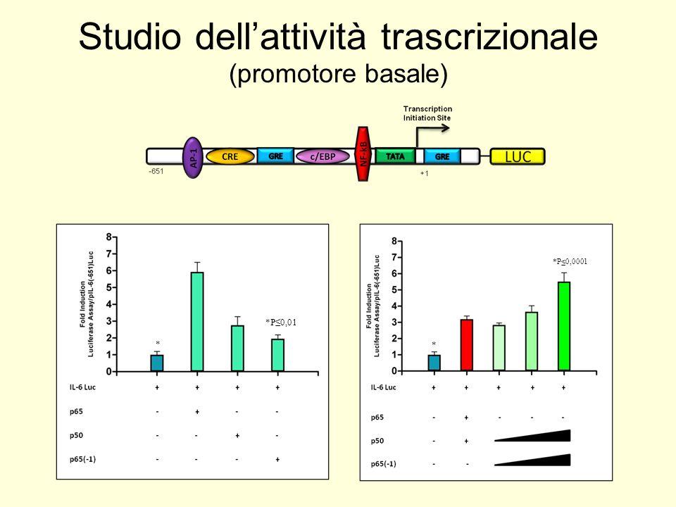 *P0,01 *P0,0001 * * Studio dellattività trascrizionale (promotore basale)