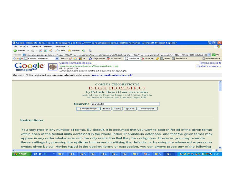 Nel 1989 riesce ad ottenere una versione dell'Index sotto forma di ipertesto consultabile interattivamente e pubblicata su CD-ROM e nel 2005 ha fatto