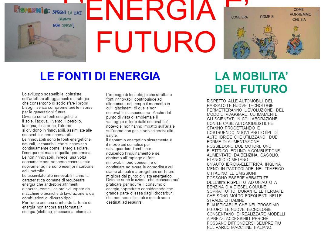 LENERGIA E FUTURO Lo sviluppo sostenibile, coinsiste nell'adottare atteggiamenti e strategie che consentono di soddisfare i propri bisogni senza compr