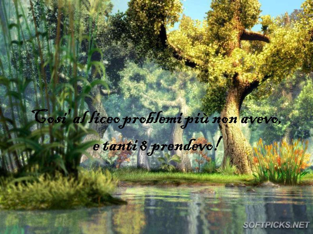 E i problemi riuscivo a sviluppare!!!