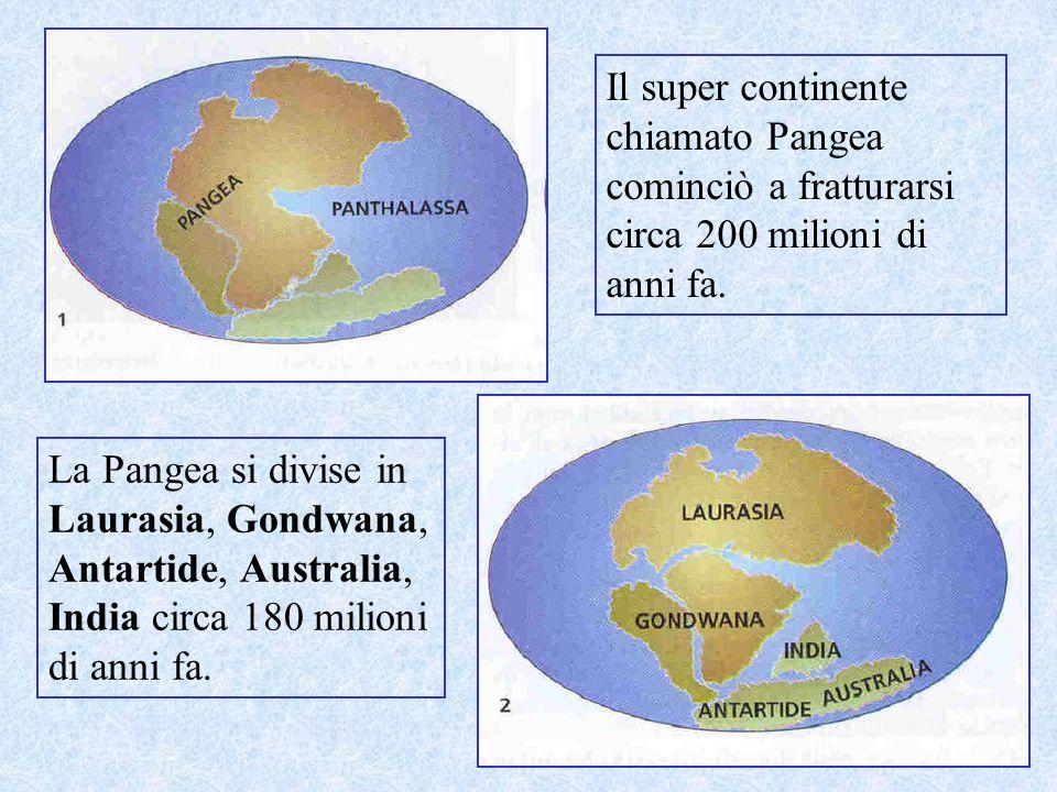 Il super continente chiamato Pangea cominciò a fratturarsi circa 200 milioni di anni fa.