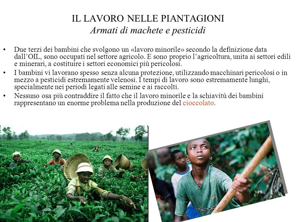 IL LAVORO NELLE PIANTAGIONI Armati di machete e pesticidi Due terzi dei bambini che svolgono un «lavoro minorile» secondo la definizione data dallOIL,