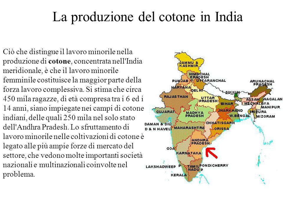 Ciò che distingue il lavoro minorile nella produzione di cotone, concentrata nell'India meridionale, è che il lavoro minorile femminile costituisce la