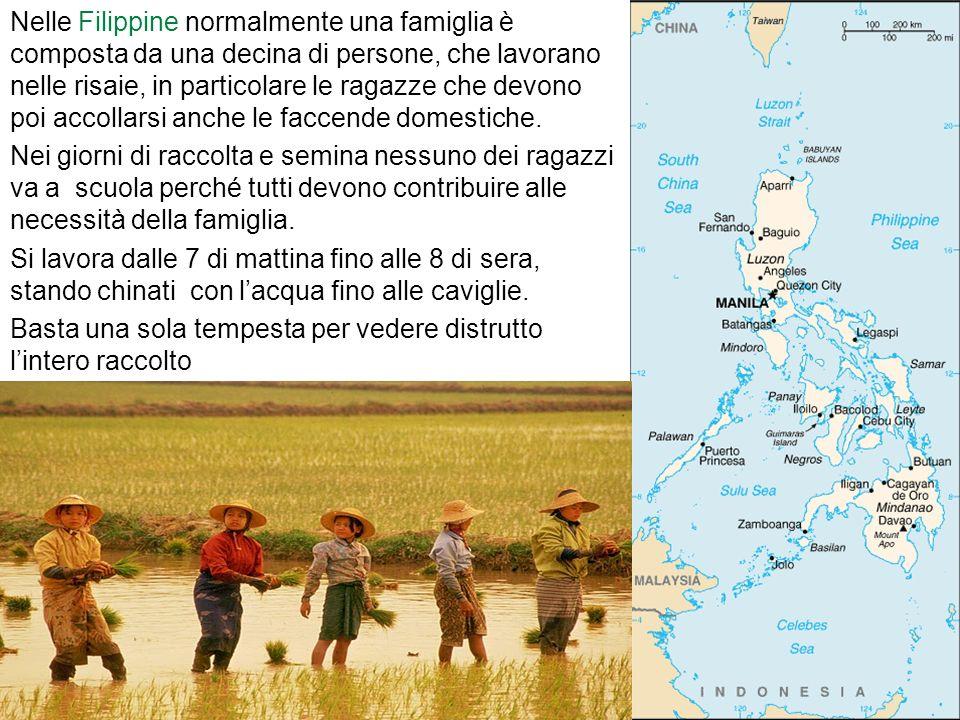 Nelle Filippine normalmente una famiglia è composta da una decina di persone, che lavorano nelle risaie, in particolare le ragazze che devono poi acco