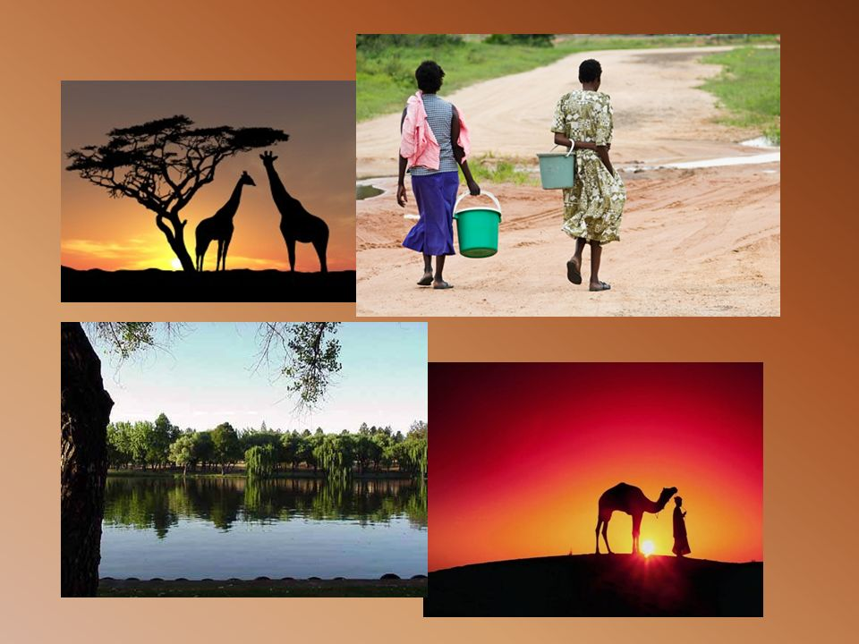 UN ECOMONIA DISOMOGENEA Grandi differenze nelle sviluppo Paesi avviati verso lo sviluppo economico.