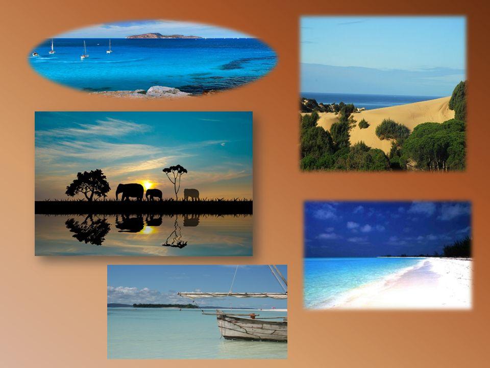 IL CLIMA Il clima presenta molte varietà: FASCIA EQUATORALE clima caldo e umido.