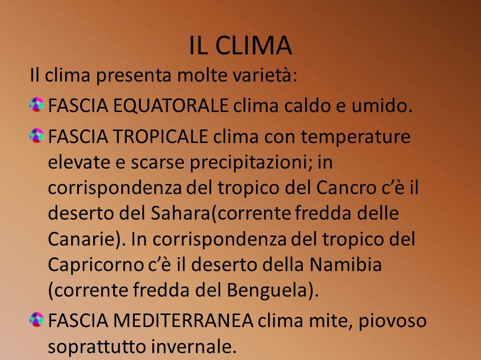 I VARI AMBIENTI Gli ambienti africani presentano una notevole varietà come quella climatica: FORESTA PLUVIALE (alta biodiversità con fauna ricca di uccelli, rettili, scimmie e insetti.) SAVANA (caratterizzata da grandi distese di erbe con arbusti e alberi isolati.) ZONE DESERTICHE ( come il Sahara dove vi sono animali che si sono abituati al tipo di clima.)
