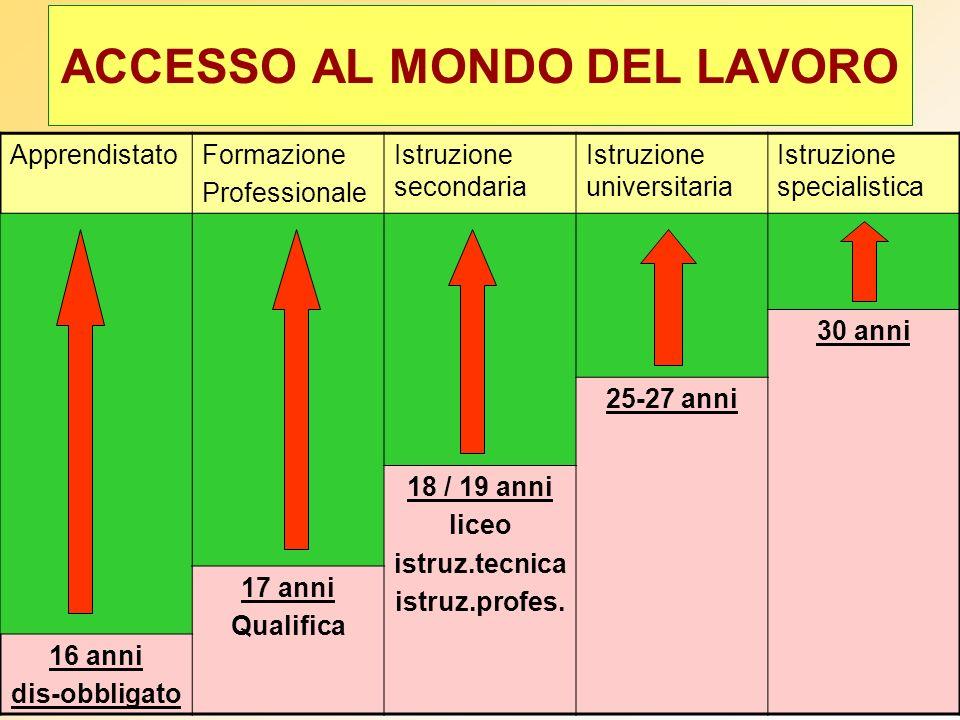 corsi svolti nei Centri di Formazione Professionale che hanno ottenuto un accreditamento dalla Regione Veneto (L.R.