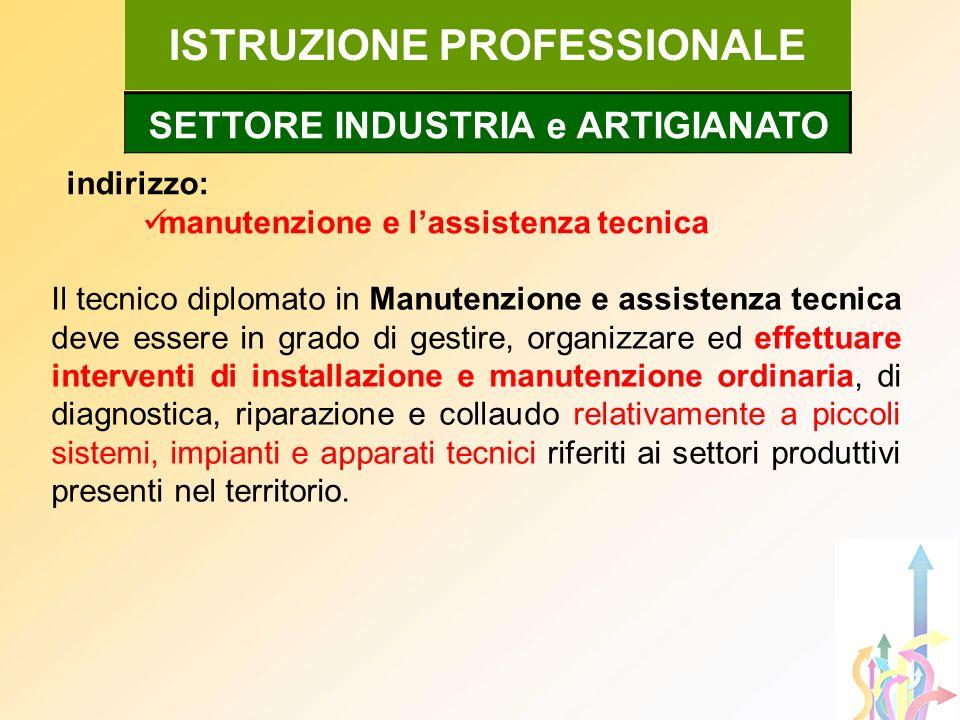ISTRUZIONE PROFESSIONALE indirizzo: manutenzione e lassistenza tecnica Il tecnico diplomato in Manutenzione e assistenza tecnica deve essere in grado