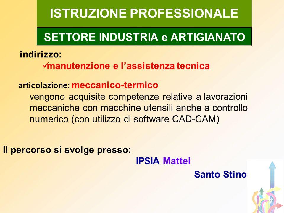ISTRUZIONE PROFESSIONALE indirizzo: manutenzione e lassistenza tecnica SETTORE INDUSTRIA e ARTIGIANATO IPSIA Mattei Santo Stino Il percorso si svolge