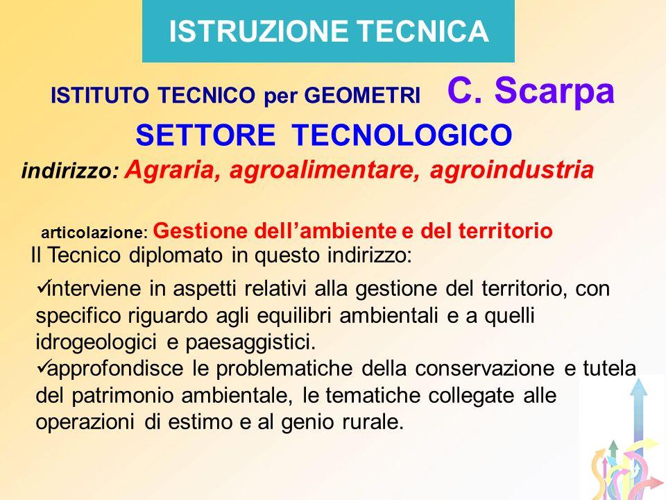 ISTRUZIONE TECNICA SETTORE TECNOLOGICO indirizzo: Agraria, agroalimentare, agroindustria ISTITUTO TECNICO per GEOMETRI C. Scarpa Il Tecnico diplomato