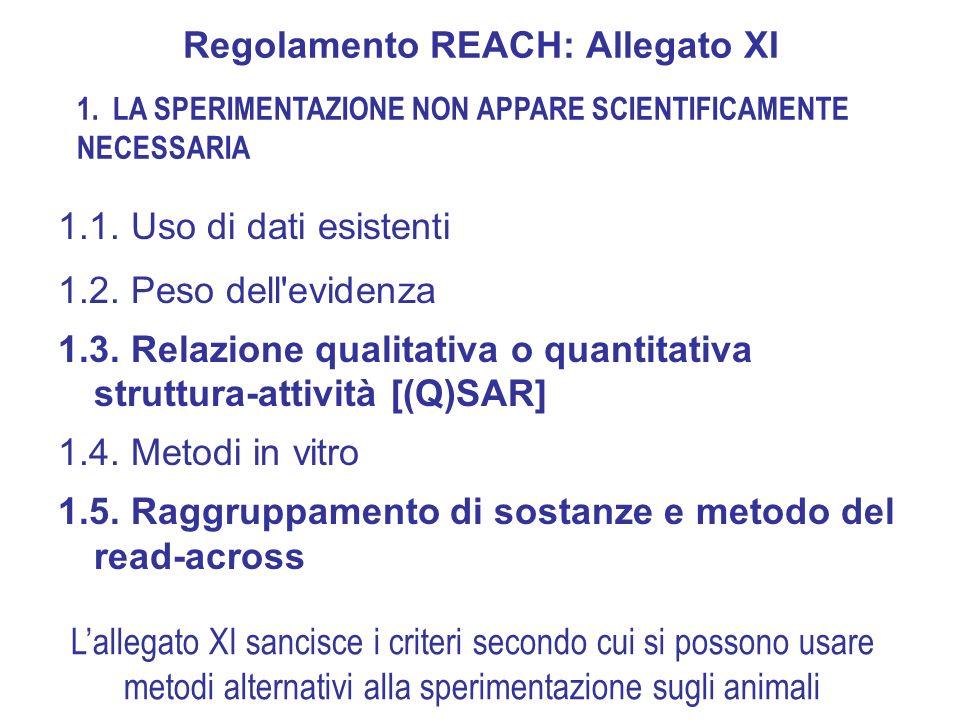 5. Report