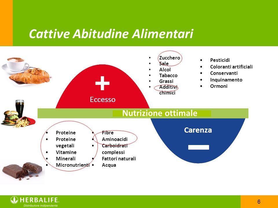6 Proteine Proteine vegetali Vitamine Minerali Micronutrienti Fibre Aminoacidi Carboidrati complessi Fattori naturali Acqua Pesticidi Coloranti artifi