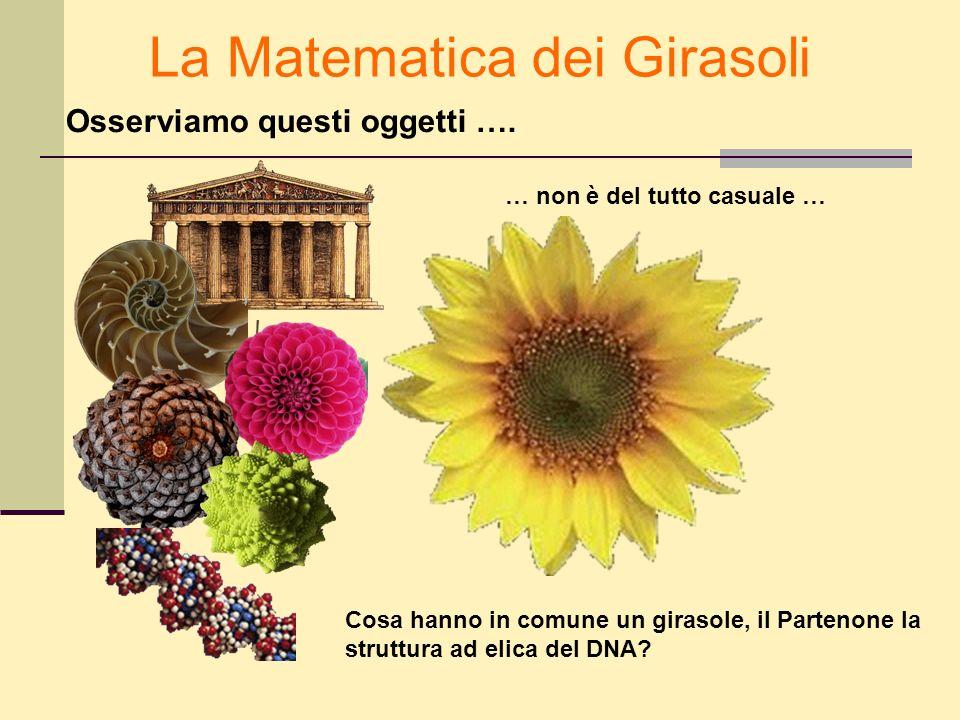 La Matematica dei Girasoli Osserviamo questi oggetti …. Cosa hanno in comune un girasole, il Partenone la struttura ad elica del DNA? … non è del tutt
