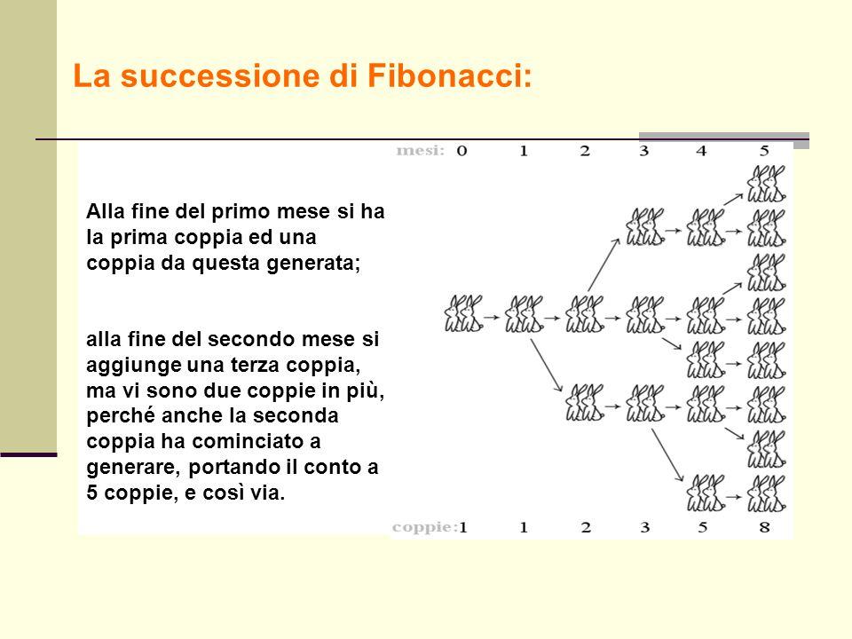 La successione di Fibonacci: Alla fine del primo mese si ha la prima coppia ed una coppia da questa generata; alla fine del secondo mese si aggiunge u