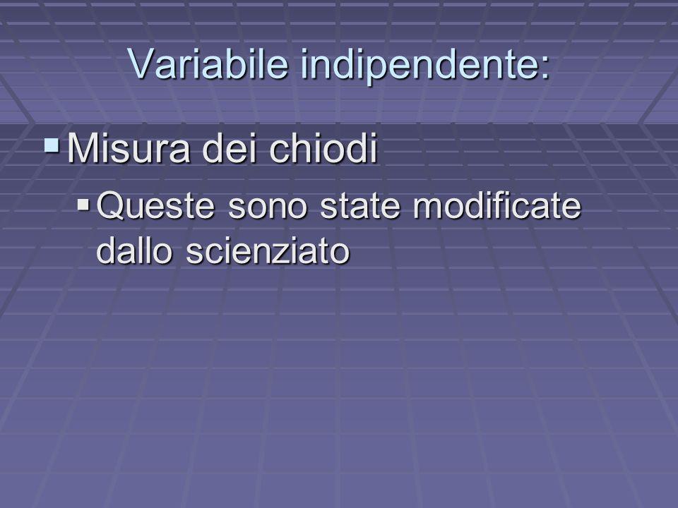 Variabile indipendente: Misura dei chiodi Misura dei chiodi Queste sono state modificate dallo scienziato Queste sono state modificate dallo scienziato