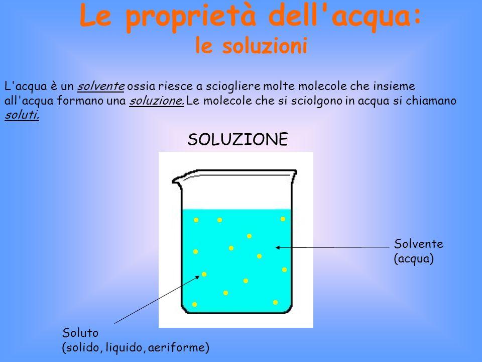 Le proprietà dell acqua: le soluzioni L acqua è un solvente ossia riesce a sciogliere molte molecole che insieme all acqua formano una soluzione.
