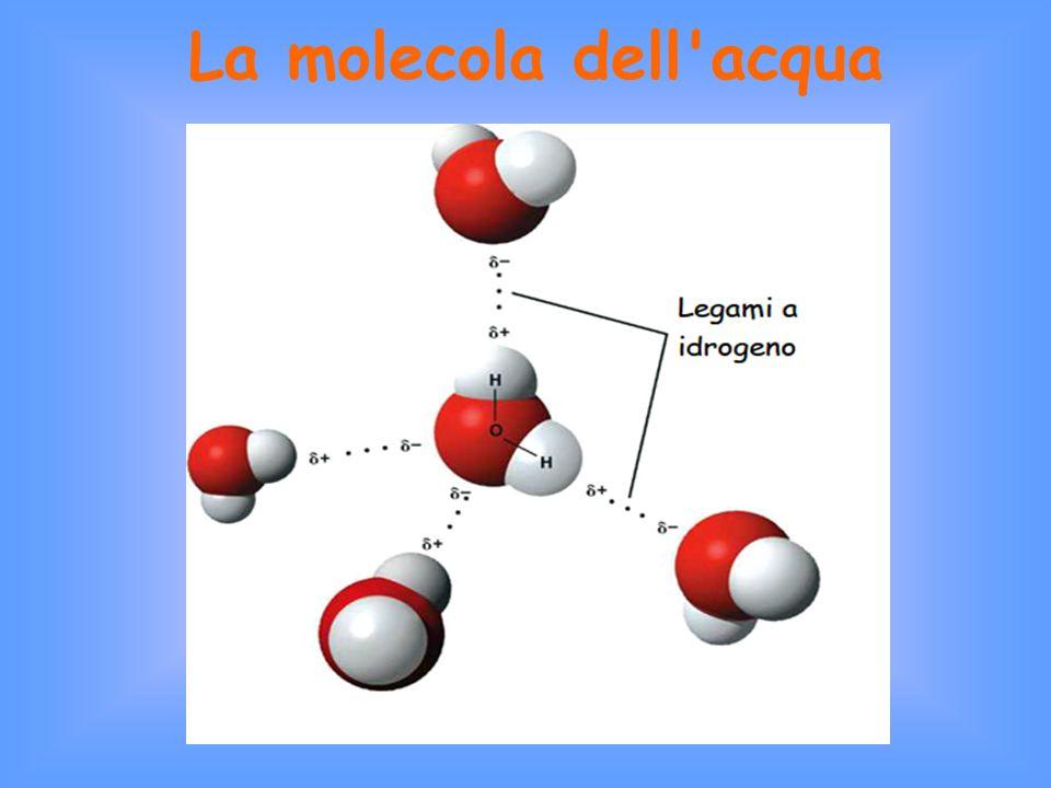 Gli stati di aggregazione dell acqua Solido (ghiaccio) Aeriforme (vapore acqueo) Liquido 0ºC100ºC Non ha forma propria Ha un volume proprio Non è comprimibile Superficie sempre piana e orizzontale