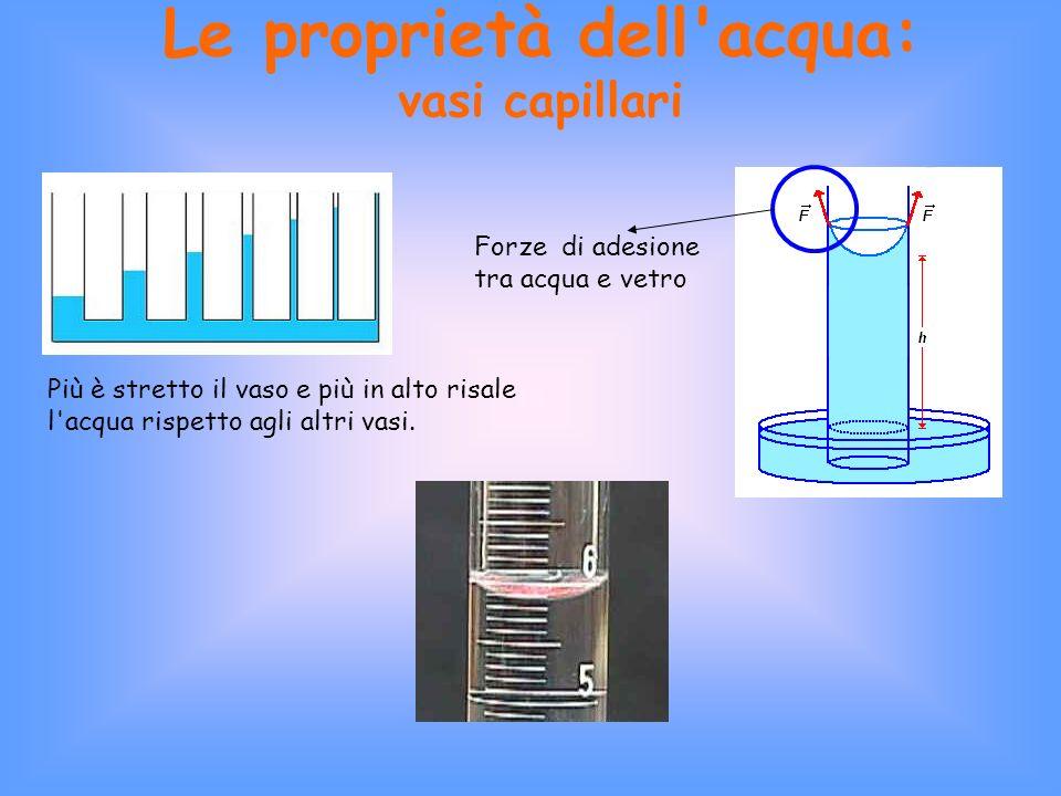 Le proprietà dell acqua: vasi capillari Più è stretto il vaso e più in alto risale l acqua rispetto agli altri vasi.