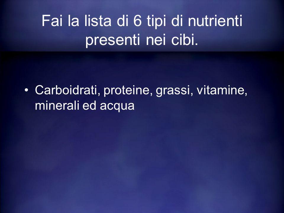 Carboidrati, proteine, grassi, vitamine, minerali ed acqua