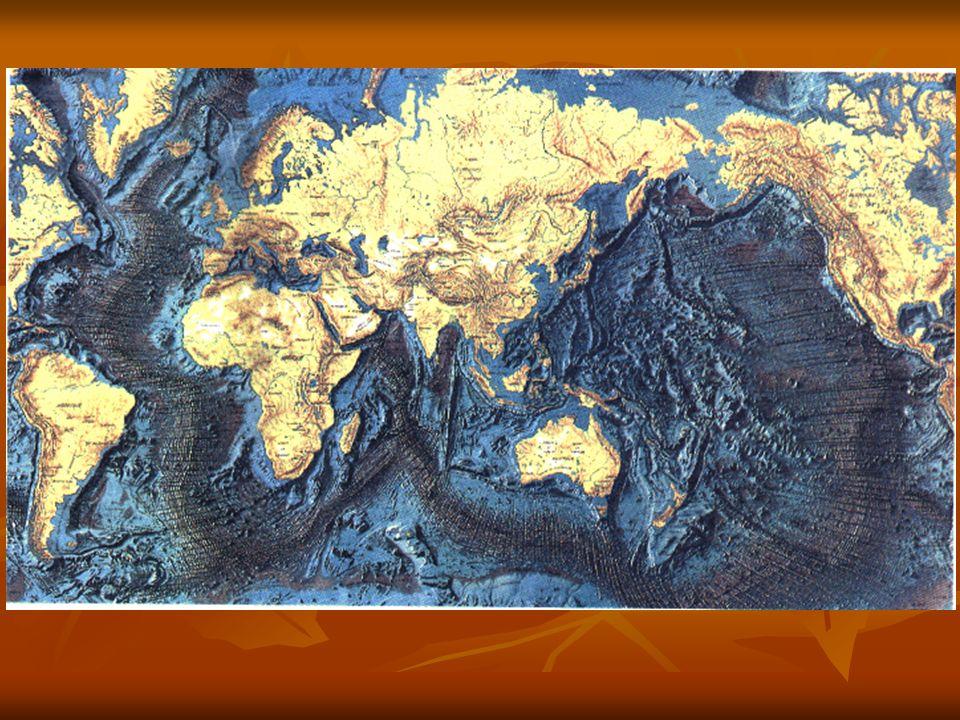 Dallosservazione della cartina è possibile osservare strutture particolari, simili a cicatrici: sono le dorsali oceaniche.