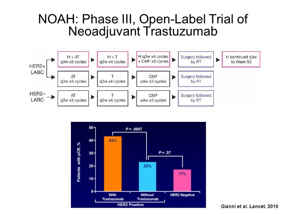 NOAH: Phase III, Open-Label Trial of Neoadjuvant Trastuzumab Gianni et al. Lancet. 2010
