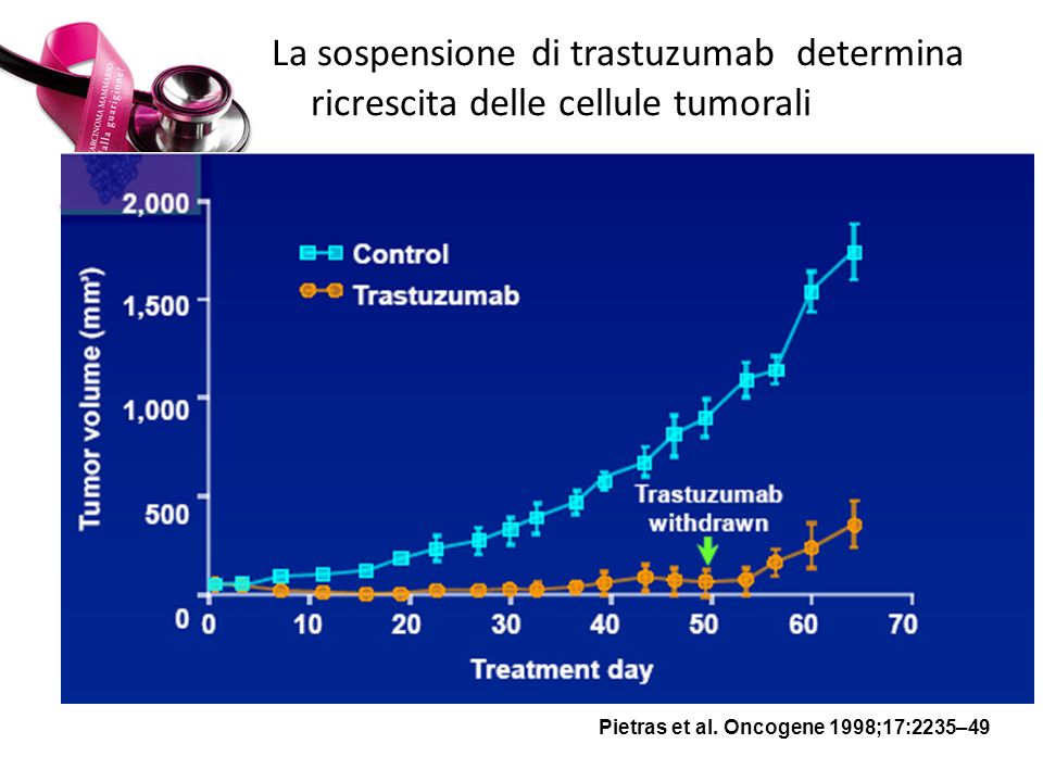 La sospensione di trastuzumab determina ricrescita delle cellule tumorali Pietras et al. Oncogene 1998;17:2235–49 2,000 1,500 1,000 500 0 010203040506