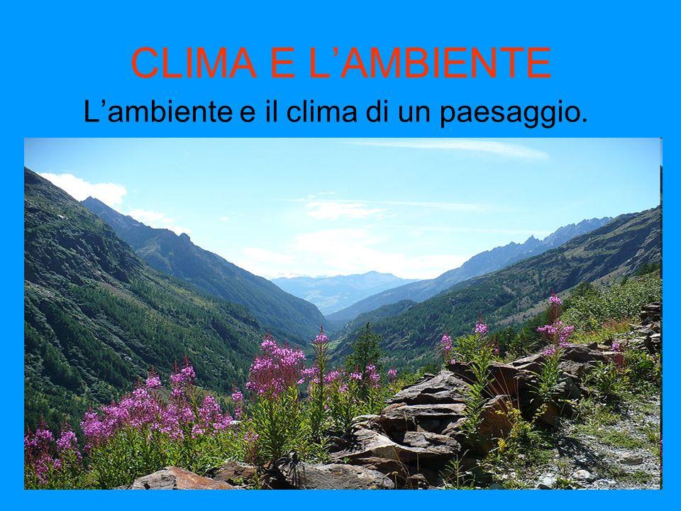CLIMA E LAMBIENTE Lambiente e il clima di un paesaggio.