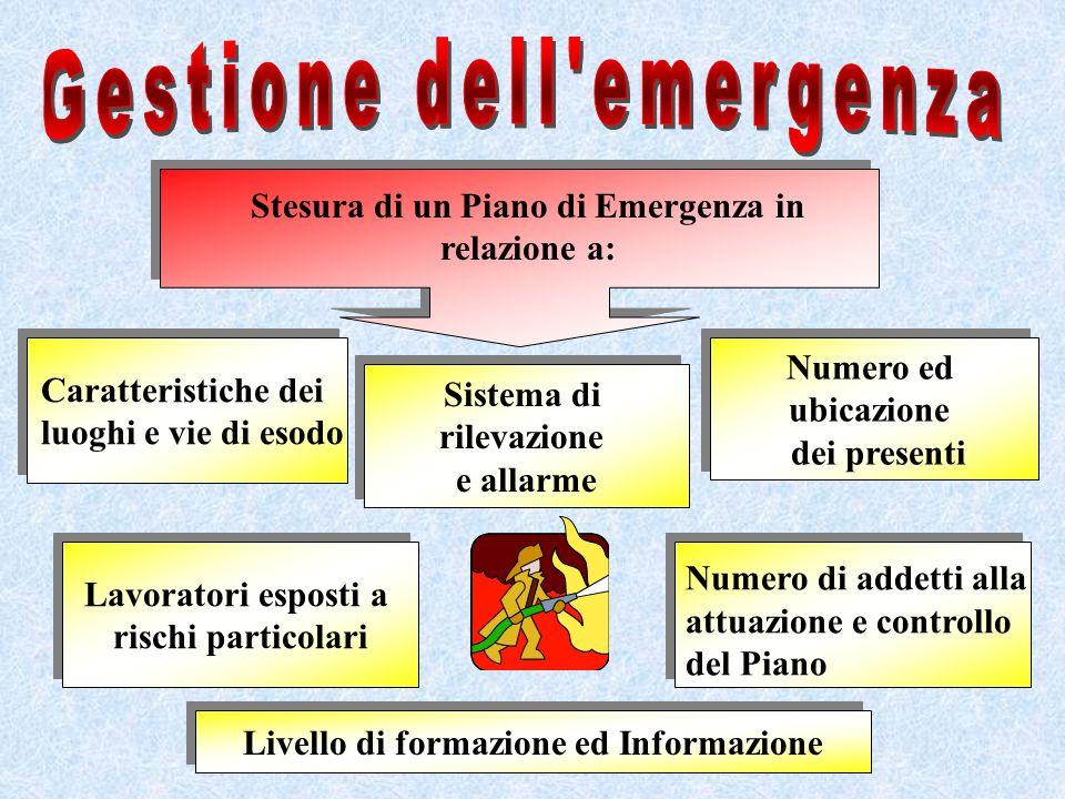 Stesura di un Piano di Emergenza in relazione a: Caratteristiche dei luoghi e vie di esodo Caratteristiche dei luoghi e vie di esodo Sistema di rileva
