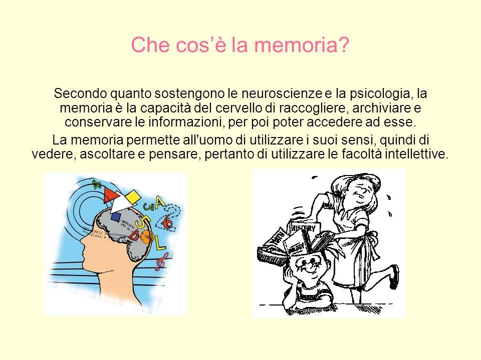 Fasi principali di elaborazione della memoria Le fasi principali di elaborazione della memoria sono: codifica: lelaborazione delle informazioni ricevute, immagazzinamento: la creazione di registrazioni permanenti delle informazioni codificate.