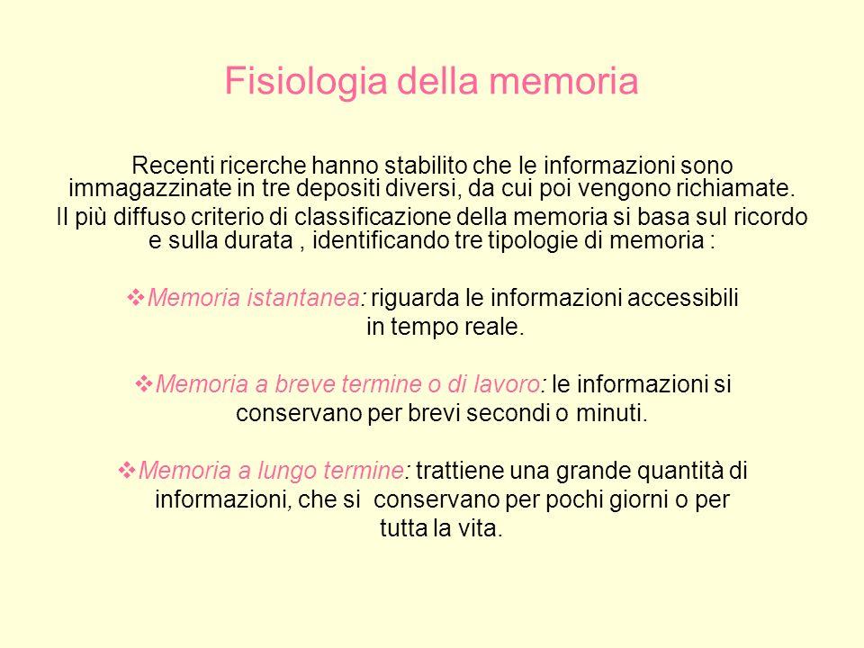Meccanismo di immagazzinamento delle informazioni: la memoria a breve termine La memoria a breve termine, detta anche memoria temporanea (MBT), implica sistemi diversi, anche se strettamente integrati, della memoria a lungo termine.