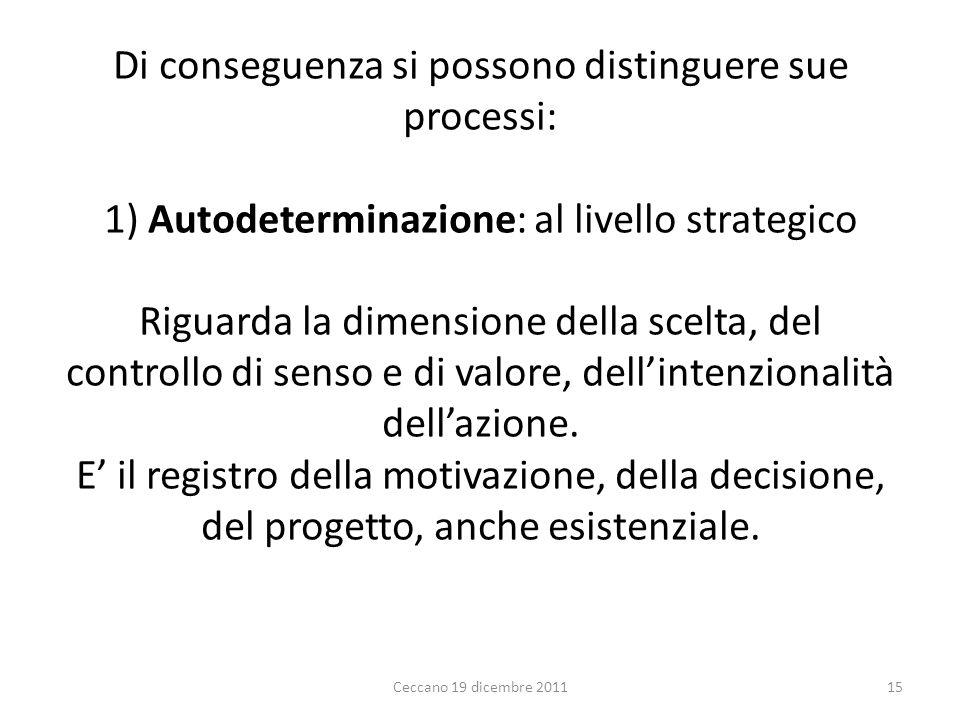 Di conseguenza si possono distinguere sue processi: 1) Autodeterminazione: al livello strategico Riguarda la dimensione della scelta, del controllo di