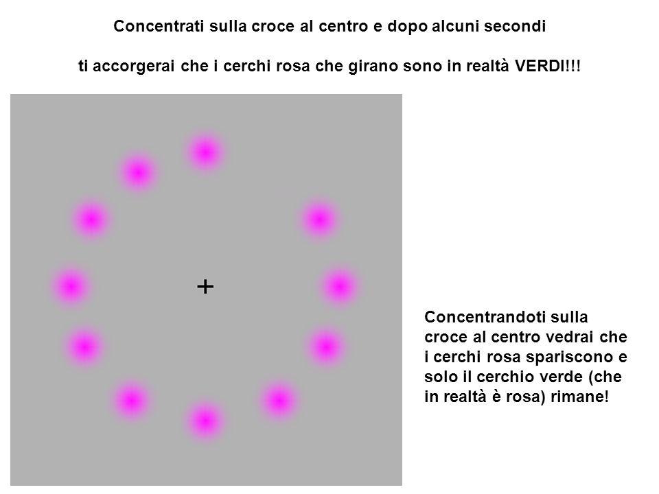 Concentrati sulla croce al centro e dopo alcuni secondi ti accorgerai che i cerchi rosa che girano sono in realtà VERDI!!! Concentrandoti sulla croce