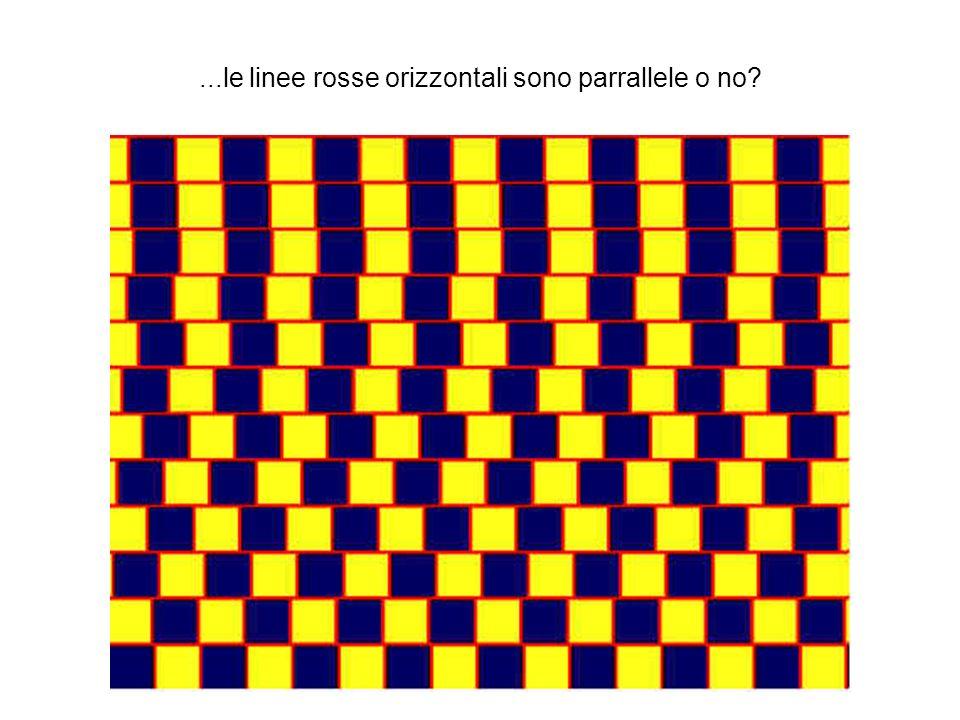 ...le linee rosse orizzontali sono parrallele o no?