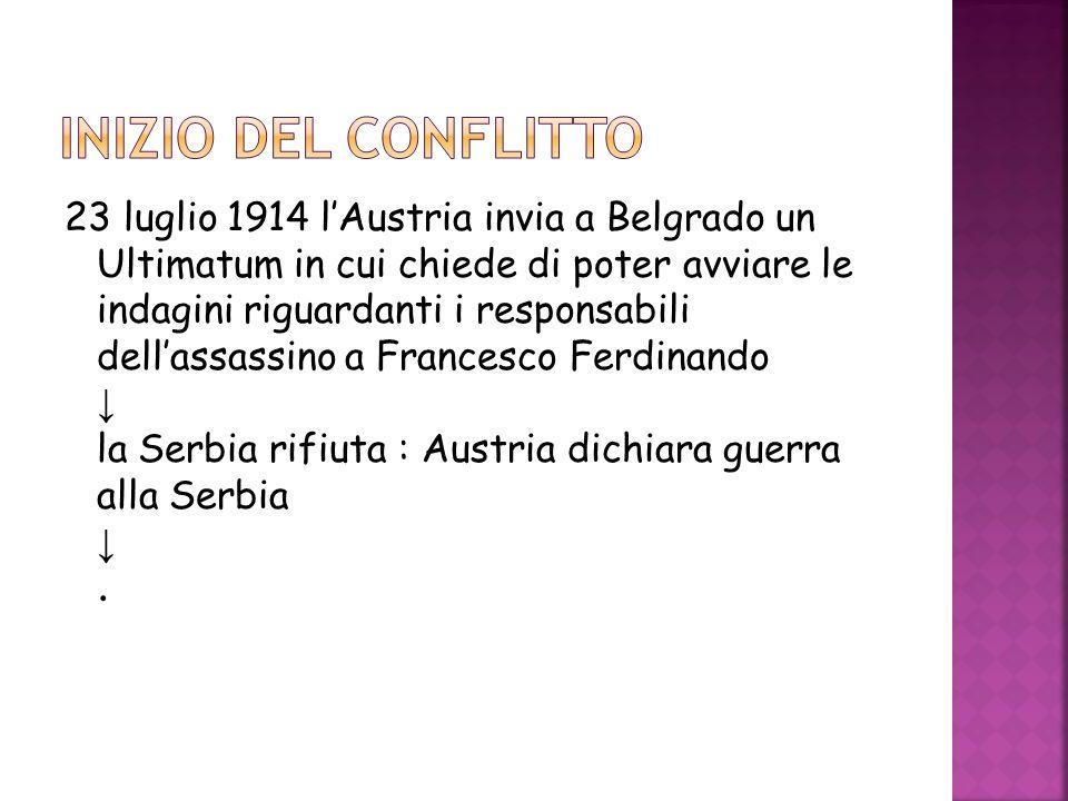 23 luglio 1914 lAustria invia a Belgrado un Ultimatum in cui chiede di poter avviare le indagini riguardanti i responsabili dellassassino a Francesco