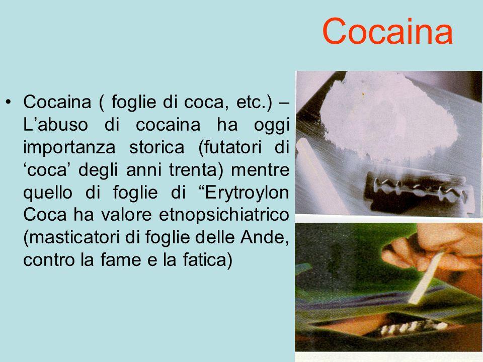 Cocaina Cocaina ( foglie di coca, etc.) – Labuso di cocaina ha oggi importanza storica (futatori di coca degli anni trenta) mentre quello di foglie di