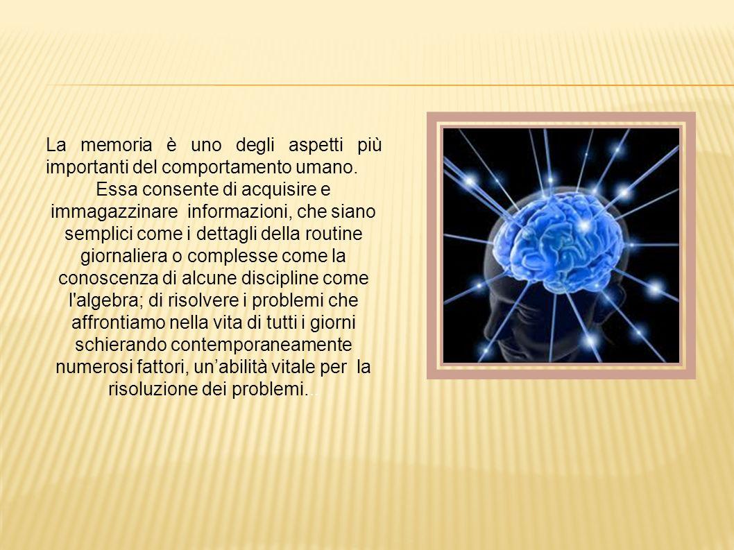 La memoria è uno degli aspetti più importanti del comportamento umano. Essa consente di acquisire e immagazzinare informazioni, che siano semplici com