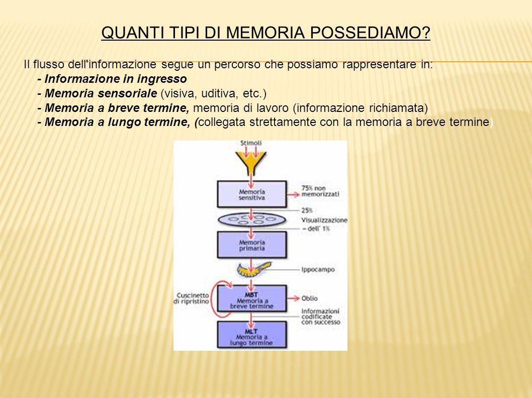 QUANTI TIPI DI MEMORIA POSSEDIAMO? Il flusso dell'informazione segue un percorso che possiamo rappresentare in: - Informazione in ingresso - Memoria s