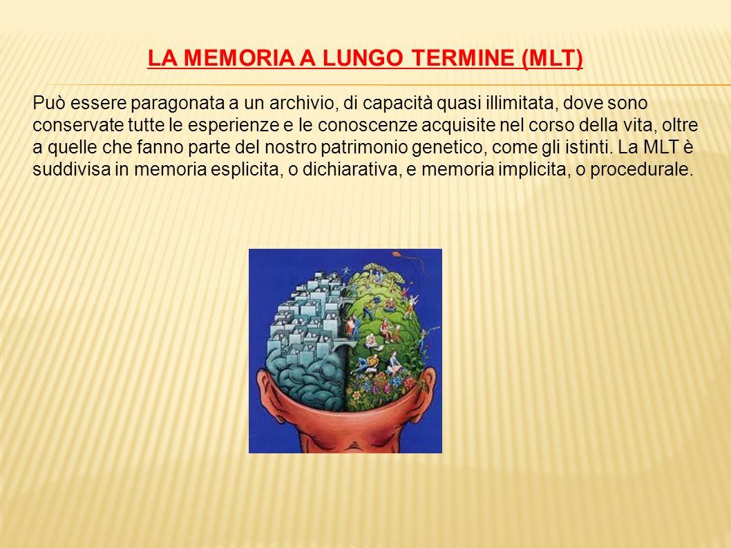 LA MEMORIA A LUNGO TERMINE (MLT) Può essere paragonata a un archivio, di capacità quasi illimitata, dove sono conservate tutte le esperienze e le cono