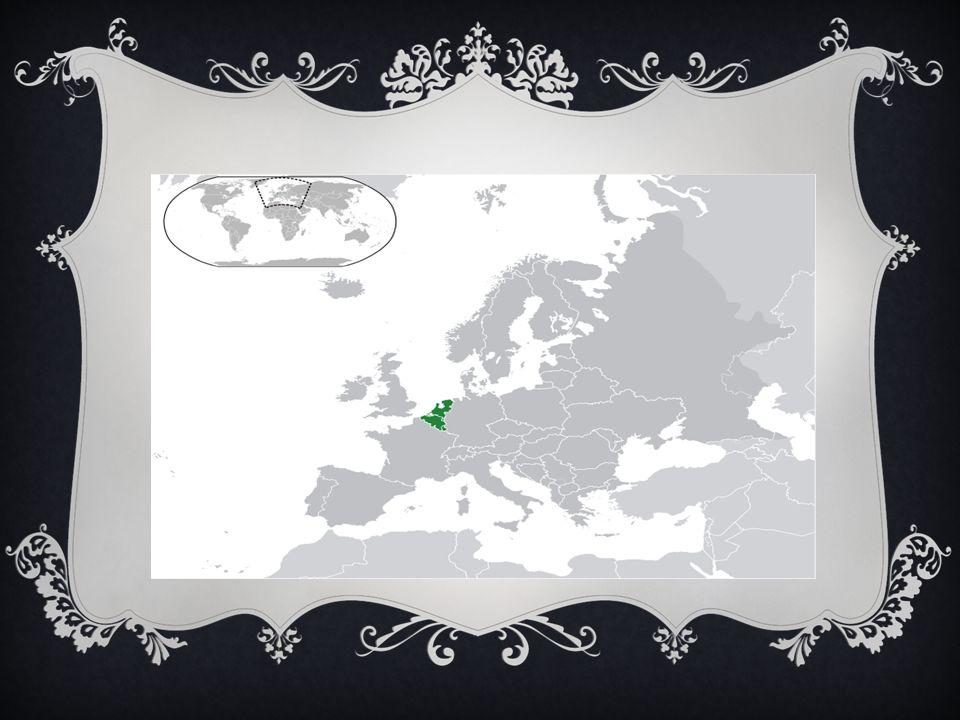 I Paesi Bassi hanno le terre meno elevate dell Europa: 1/3 superficie pianure artificiali sono sotto il livello del mare, separate da dighe.