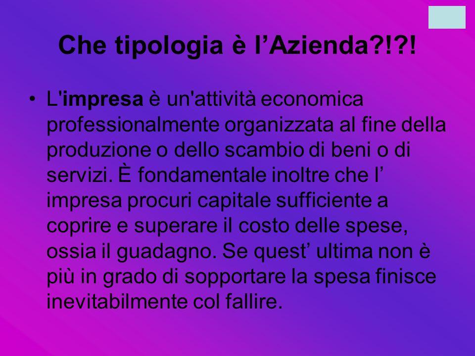 Che tipologia è lAzienda?!?! L'impresa è un'attività economica professionalmente organizzata al fine della produzione o dello scambio di beni o di ser
